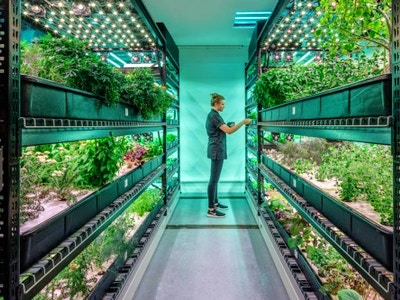 Hydroponic Farm Tour and Tasting