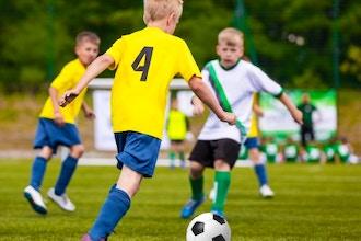 Soccer Shots Mini