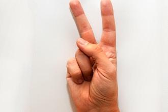American Sign Language - Level 2