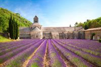 The French Countryside (BYOB)