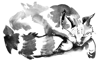 Sumi-e: Cats & Kittens