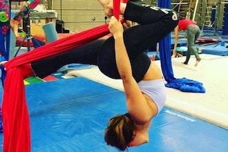 Flexibility (Virtual)