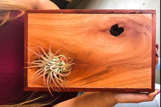 Intro to Wood Shop - Airplant Art