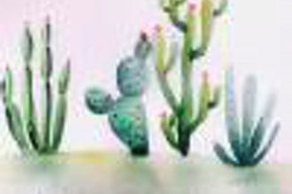 Painting Cactus with Leila (Online)