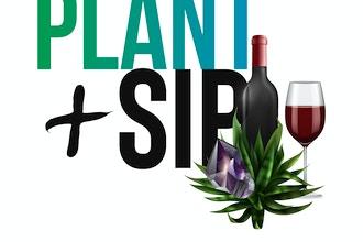 PLANT + Sip: Succulents