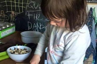 Positive Discipline for Preschoolers Series