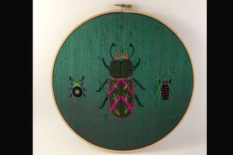 Introduction to Embroidery: Insect Contemporary