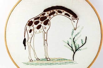 Introduction to Embroidery: Animal