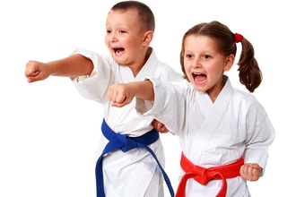 Karate: Kids' Class - beginners