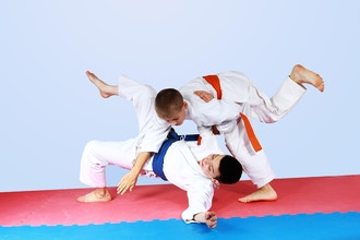 Brazilian Jiu Jitsu - for Kids (ages 10 & up)