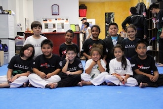 Kid's Tae Kwon Do and Self-Defense Int (ages 9-12)