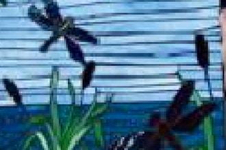 Mosaic Glass on Wood