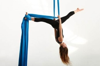 Aerial Arts All Levels — Silks (8-16 yrs)