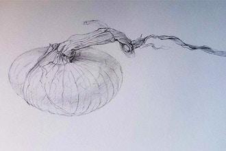 Botanical Drawing (Virtual)