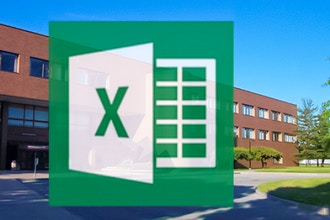 Microsoft Excel Expert (Level 3)
