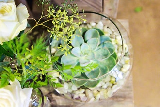 An Experience for Two: Create a Terrarium Together