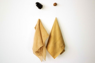 Colors of Autumn: Dyeing with Walnut Shells & Pinecones