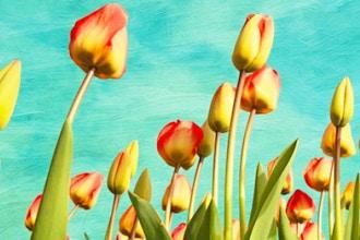 Spring Bloom Watercolor Workshop