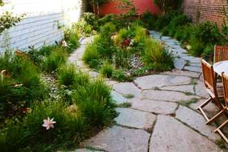 Permaculture for the Urban Garden