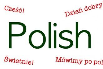 Polish - Level IV