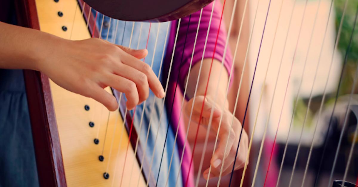 Harp Lessons Folk Celtic Or Harpsicle Private Music Classes