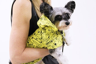 Intro to Pet Apparel and Lifestyle Product Design