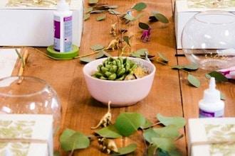 Art of Paper Succulents