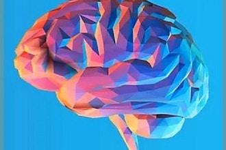 Brain and Body Longevity