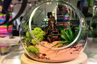 Adult Terrarium: Sunday Brunch
